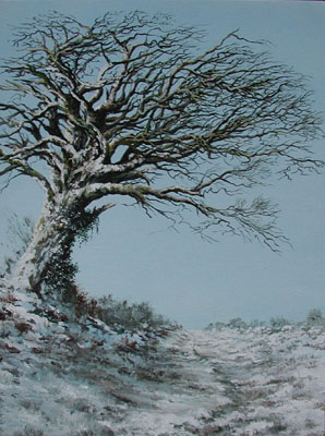 Tree on Exmoor