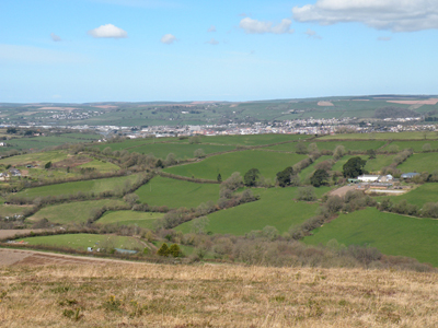 Fullabrook from Codden Hill